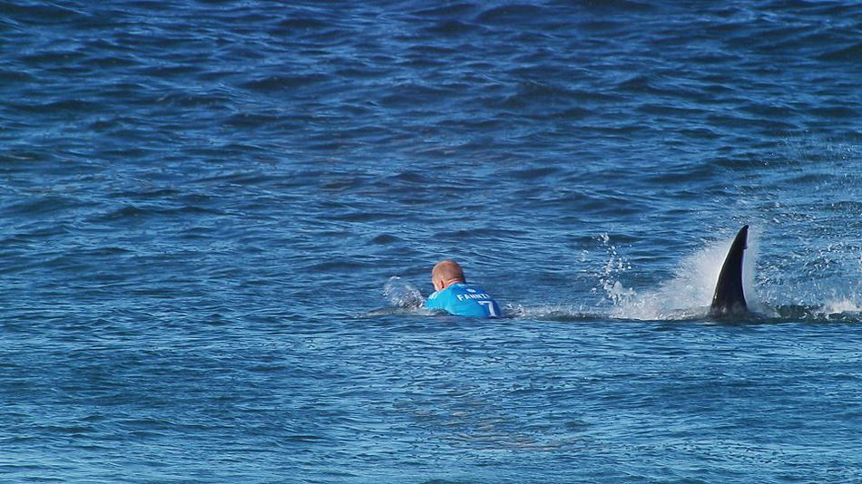 E 60 Shark Attacks Mick Fanning E60