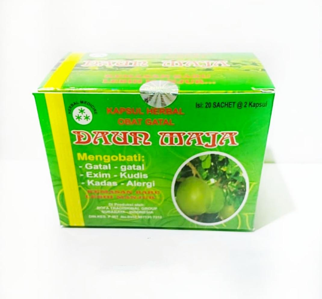 Jual Kapsul Daun Maja Original Obat Gatal dan Alergi