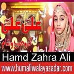 http://www.humaliwalayazadar.com/2018/03/hamd-zahra-ali-manqabat-2018.html
