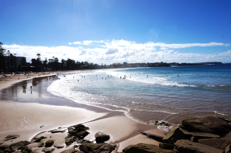 beach, Manly, Sydney, Australia, Euriental
