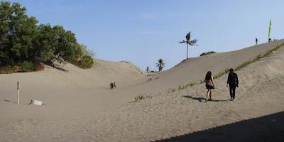 SBMPTN Geografi: Erosi tanah di Parangtritis yang membentuk cekungan antar gumuk pasir adalah