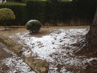 Slight Spanish Snow