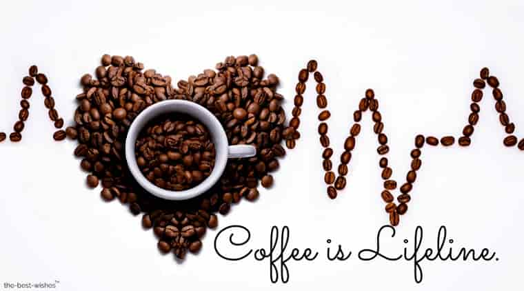 coffee is lifeline