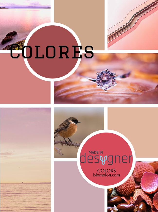color_2_desygner
