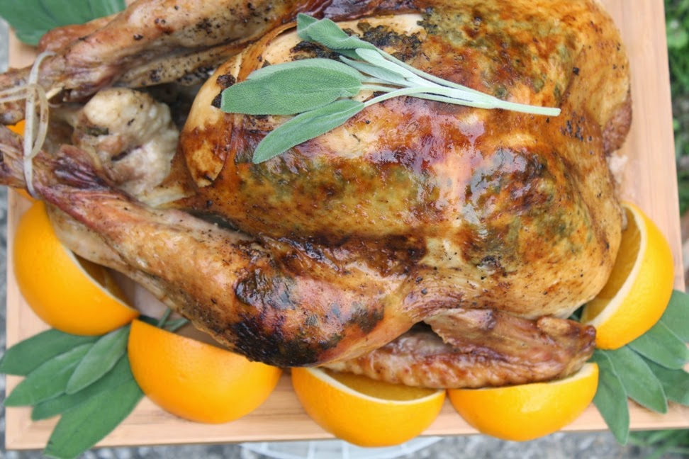 http://www.theeverythingkitchen.com/citrus-sage-roast-turkey/