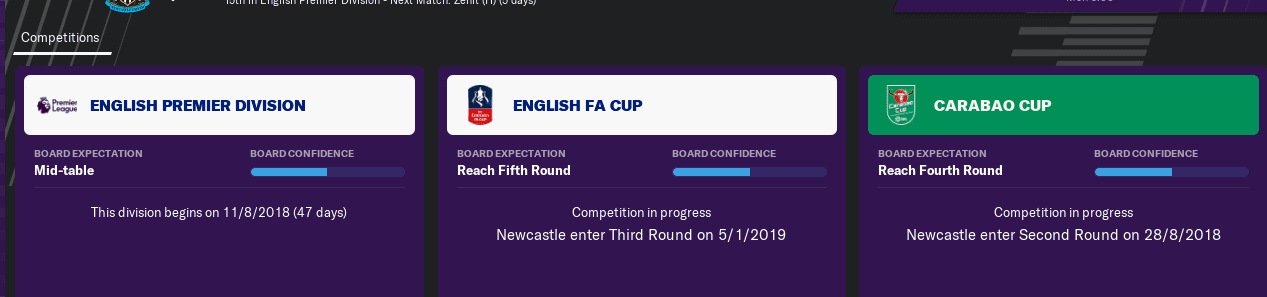 FM19 Newcastle United Season Expectations