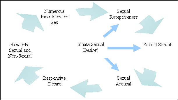 Ssri sexual dysfunction a female perspective of the air