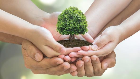 proteccion medio ambiente