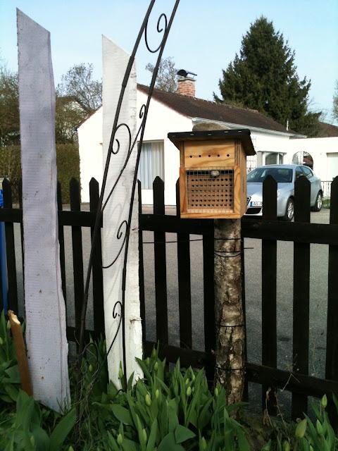 http://www.alztal-honig.de/index.php/bee-wild
