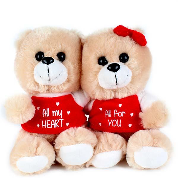 Sweet Teddy Bear Couple Pics