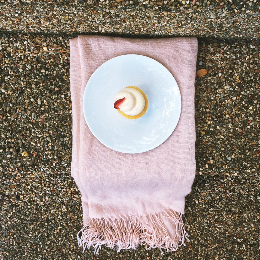 camicakes on with plate with pink scarf with fringe