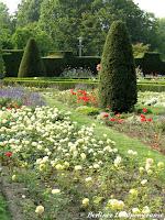 Britzer Garten Rosengarten