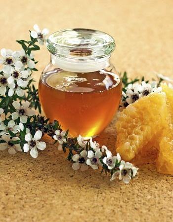 Suzy Homefaker Cinnamon Honey