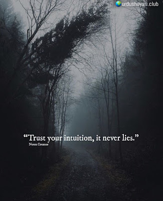 Trust Your Intuition, It Never Lies  #quotes