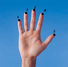 terapi stroke dengan pijat refleksi dapat mencegah penyakit stroke