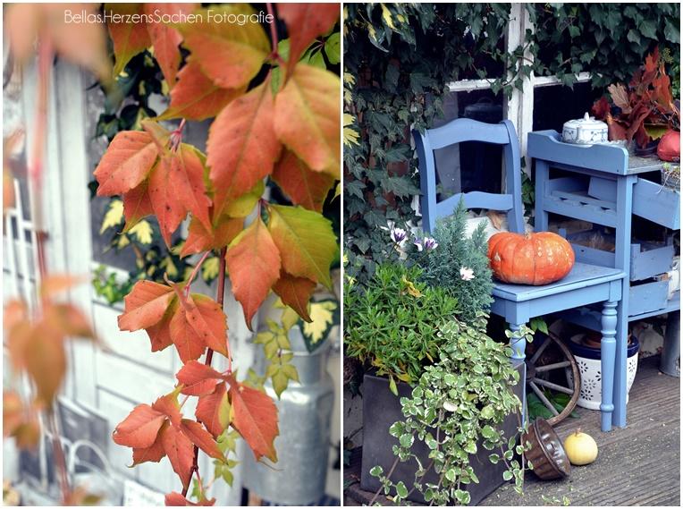 Herbstdeko Garten