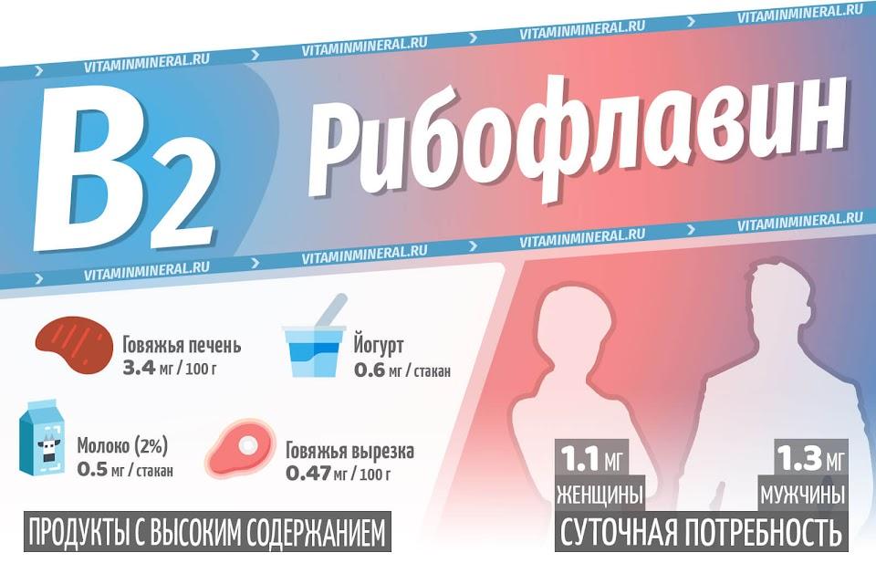 Витамин B2 — инфографика