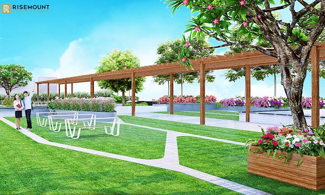 vườn hoa anh đào Movenpick Đà Nẵng