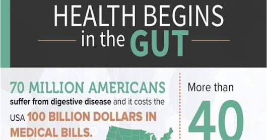 Why You Should Worry about Your Gut Health