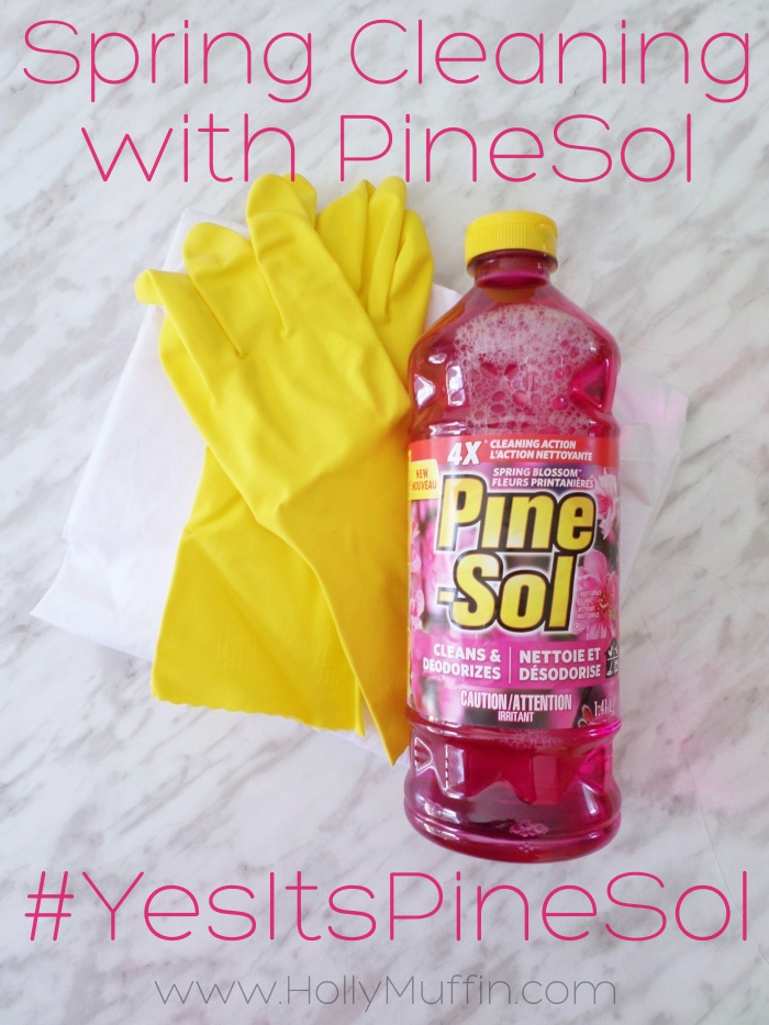 Spring cleaning tips with Pinesol!