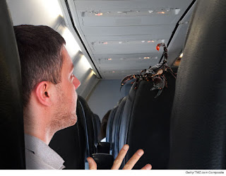 united airlines scorpion