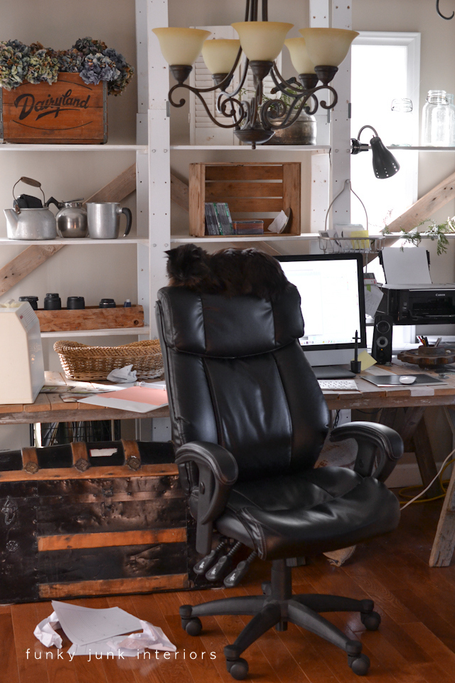 Teddy the cat, and her quirky office chair perch, via Funky Junk Interiors