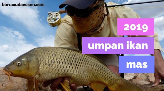 Essen Ikan Mas 2019 Slalu Strike