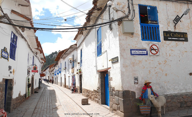 Streets of Cuzco and a baby Alpaca, Peru