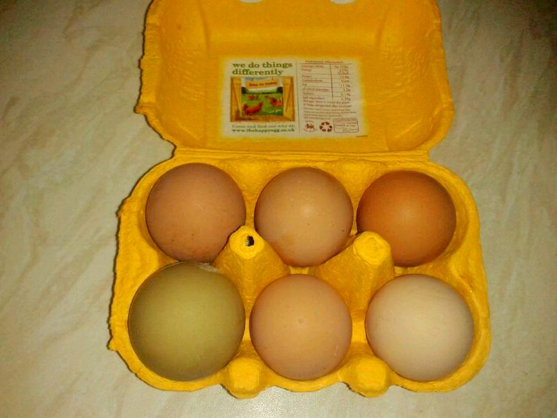 Molometer S Blog How To Cook A Soft Boiled Egg Perfectly