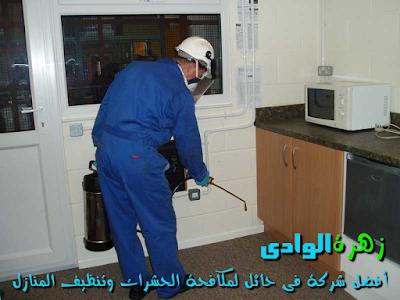 شركة زهرة الوادى - أفضل شركة لمكافحة الحشرات وتنظيف المنازل فى حائل داخل المملكة العربية السعودية