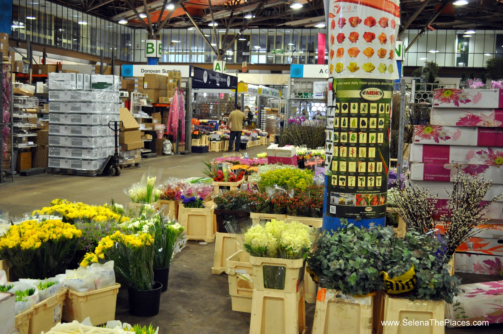 oh, the places we will go!: new covent garden flower market