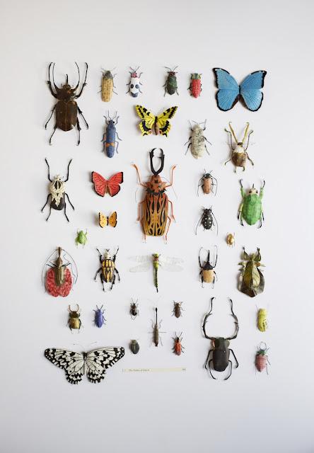 Kate kato : obras de arte inspirados en la naturaleza