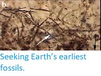 https://sciencythoughts.blogspot.com/2015/04/seeking-earths-earliest-fossils.html