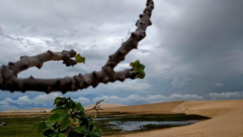 Lagoa Tatajuba - Passeio de um dia em Jericoacoara - o que fazer e como chegar. Foto: Wikimedia Commons