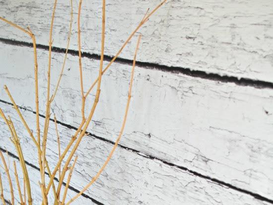 DIY Photo Backdrop with White Barnwood EasyOff Mural