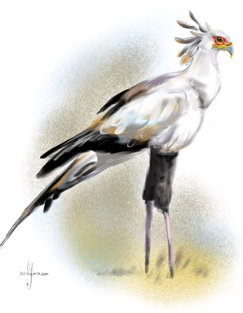 Secretarybird bird painting by Artmagenta