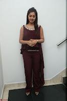 Nikki Galrani in a Brown Shining Sleeveless Gown at Nakshatram music launch ~  Exclusive 107.JPG