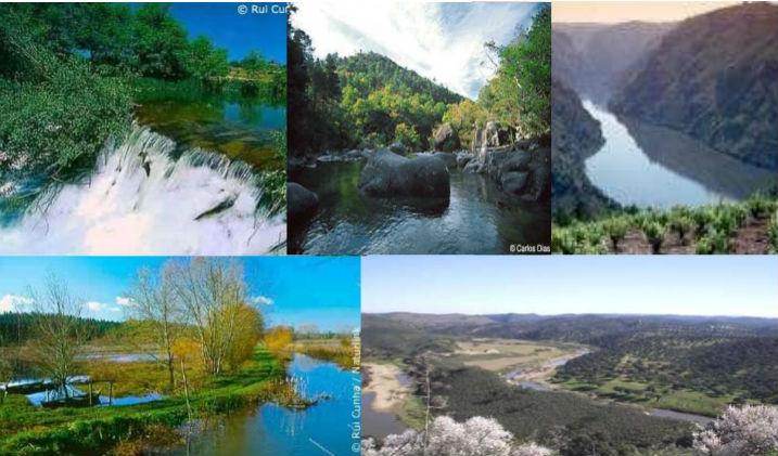 Escritorio de clases tipos de ambientes for Ambientes de argentina