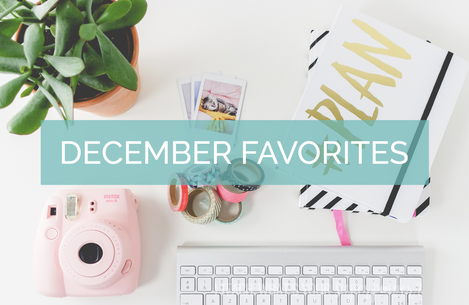 Personalized wall art, a new coffee cup, a freebie, and more.  Catch up on my favorites from the past month!
