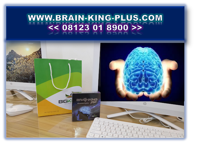Nutrisi Otak Untuk Anak | Nutrisi Otak Untuk Dewasa