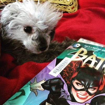 Murchie lays on a red blanket, a trade paperback copy of Batgirl Volume One beside him. The cover features a redhaired woman in formfitting black armour and a bat-eared black cowl bursting towards the viewer, grinning.