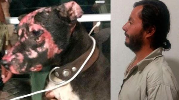 Detienen a sujeto que golpeó y quemó con un soplete a un perro en Ecatepec.