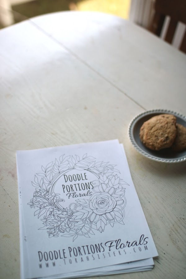 Torah Portions Coloring Book Giveaway | Land of Honey