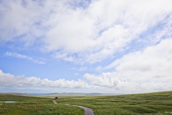 イギリス、シェットランドの最北端の風景