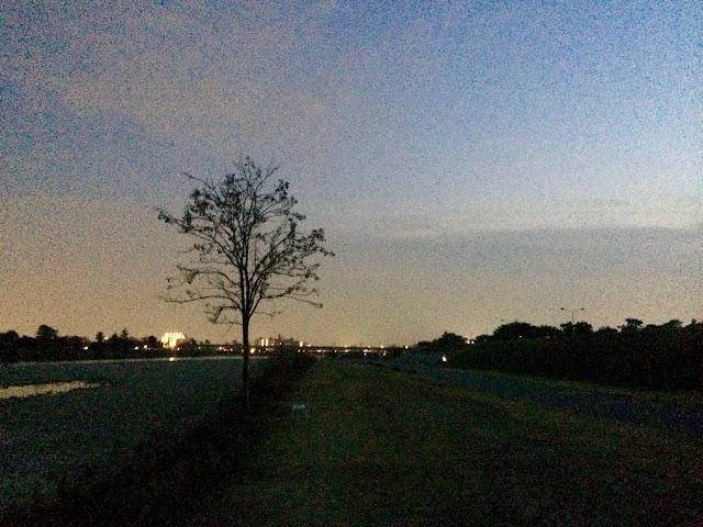 イメージ画像:夜の河原