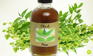 Unti  Bisunti Oli vegetali Parte Due olio neem