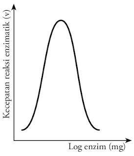 Hubungan log enzim kecepatan reaksi enzimatik