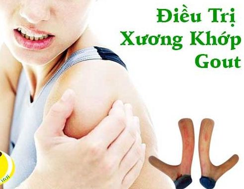 Nhung hươu điều trị xương khớp hiệu quả