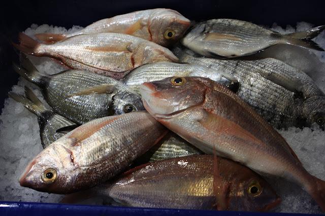 Πάει και το ελληνικό φρέσκο ψαράκι - WWF: Το 66% των ψαρικών που καταναλώνουν οι Έλληνες είναι εισαγόμενα