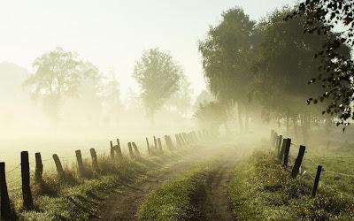 mist 05 - Ο Καιρός για 6-7/1/18: Καλοκαιρία και ομίχλες την Κυριακή
